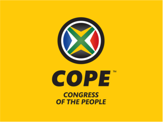 Copy cat_COPE Logo